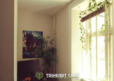 Adventure corner  eventyrshjørnet på Triheart café